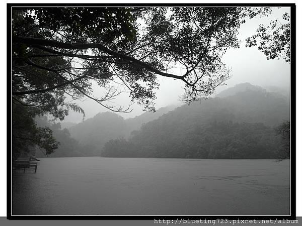 桃園大溪《慈湖》5.jpg
