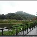 桃園大溪《慈湖》2.jpg
