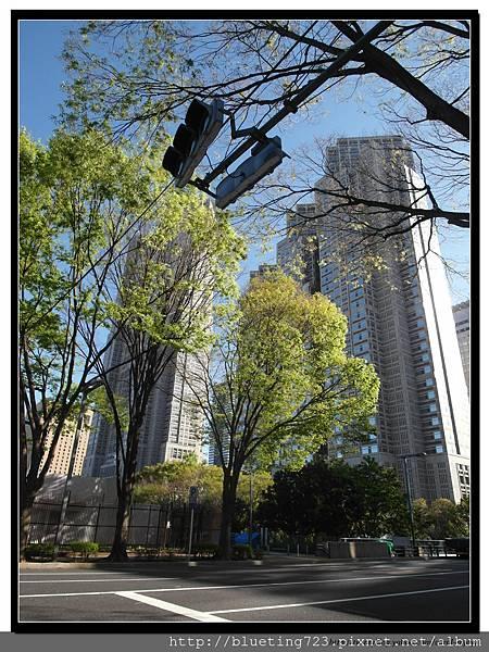 東京《新宿中央公園》2.jpg