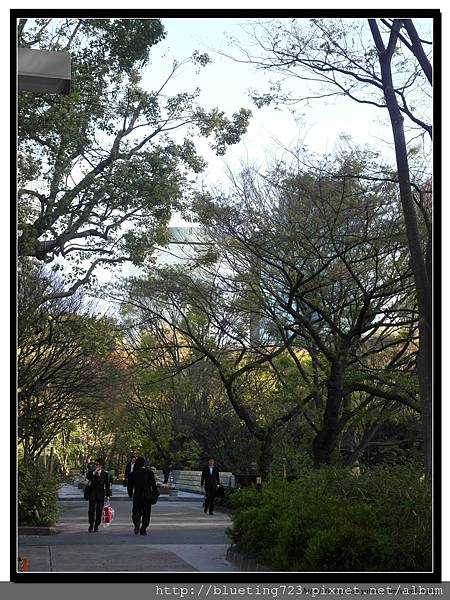 東京《新宿中央公園》5.jpg