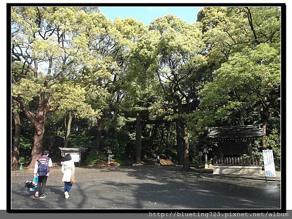 東京《明治神宮》1.jpg
