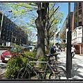 東京《表參道》1.jpg