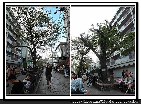 東京《自由之丘》九品佛川綠道 2.jpg