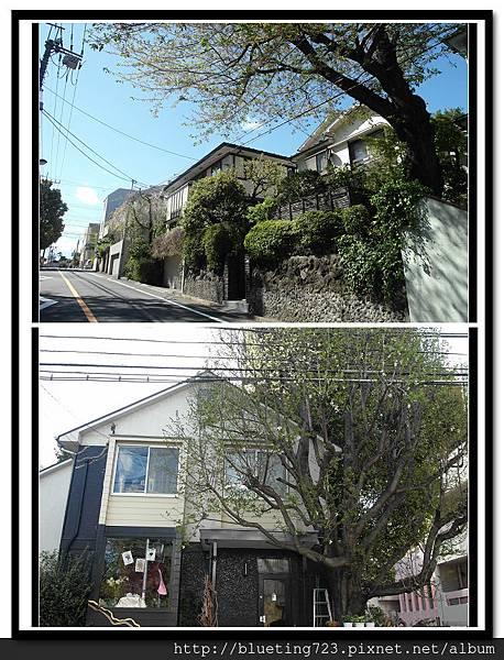 東京《自由之丘》街景一隅.jpg