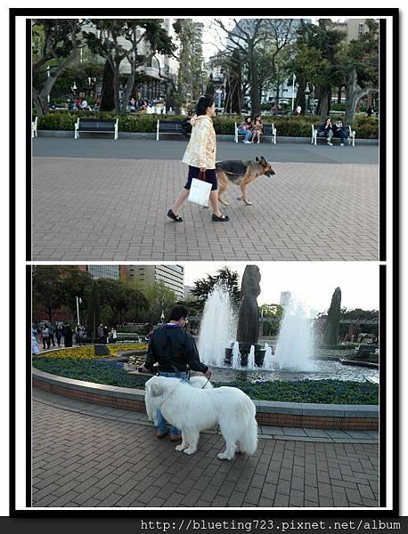 神奈川縣《橫濱》山下公園 4.jpg