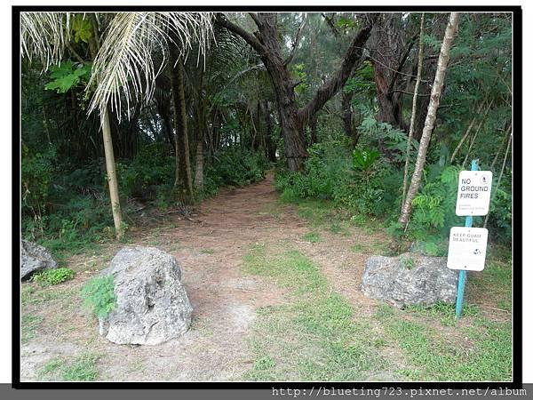 美國關島《瑞提迪恩岬Ritidian Point》樹叢入口.jpg