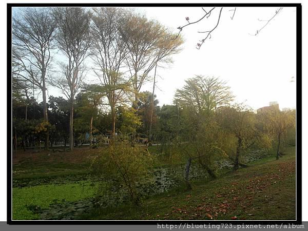 台南《巴克禮公園》4.jpg
