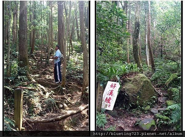 新竹尖石《北得拉曼步道》2.jpg