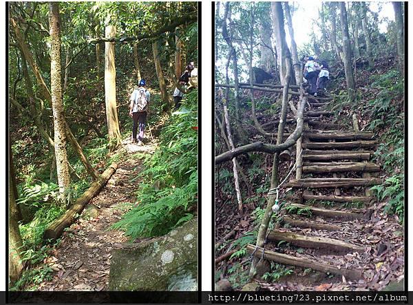 新竹尖石《北得拉曼步道》3.jpg