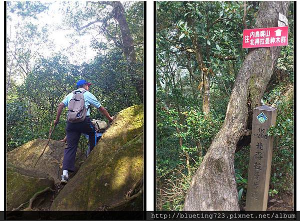 新竹尖石《北得拉曼步道》5.jpg