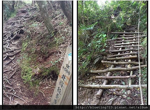 新竹尖石《北得拉曼步道》8.jpg