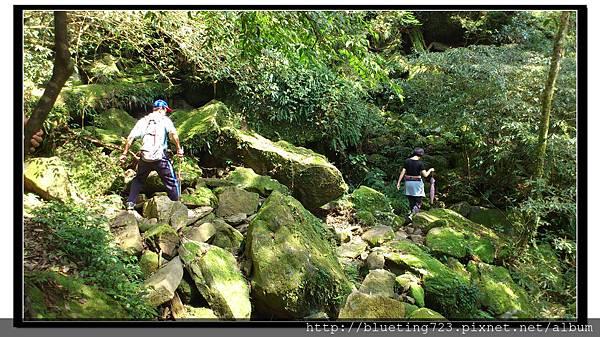 新竹尖石《北得拉曼步道》10.jpg