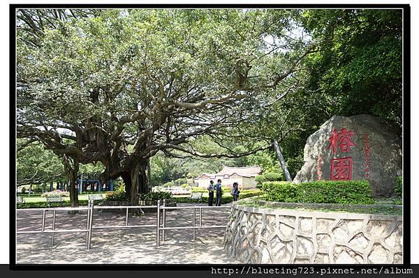 金門《榕園》.jpg
