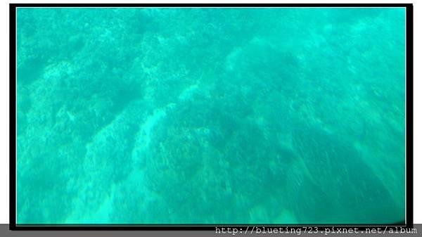 屏東《小琉球》玻璃船(半潛艇)3.jpg