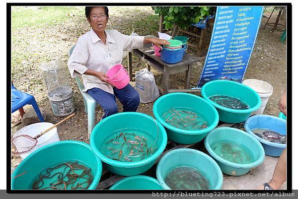 泰國《Amphawa安帕瓦水上市場》五廟遊船 7.jpg