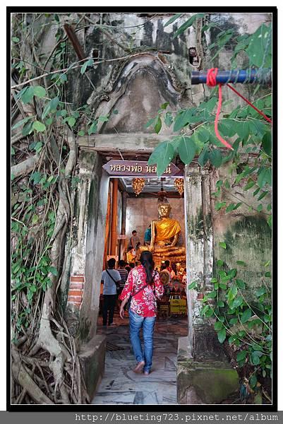 泰國《Amphawa安帕瓦水上市場》五廟遊船_樹中廟3.jpg