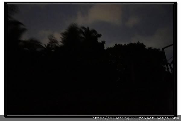泰國《Amphawa安帕瓦水上市場》夜遊_搭船看螢火蟲 5.jpg