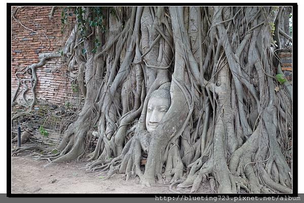 泰國大城府《Ayutthaya大城》瑪哈泰寺WAT MAHATHAT 3.jpg