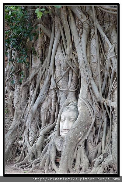 泰國大城府《Ayutthaya大城》瑪哈泰寺WAT MAHATHAT 4.jpg