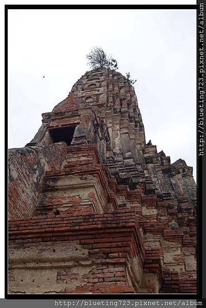 泰國大城府《Ayutthaya大城》柴瓦塔那蘭寺WAT CHAI WATTHANARAM 12.jpg