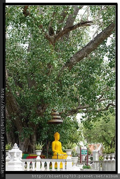 泰國大城府《安娜教堂Wat Niwet Thammaprawat》10.jpg