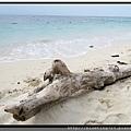 馬來西亞沙巴《馬穆迪沙灘》.jpg