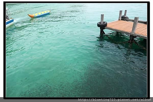 沙巴亞庇《沙比島Sapi》2.jpg