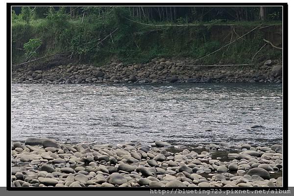 沙巴亞庇《九如河泛舟KIULU RIVER》7.jpg