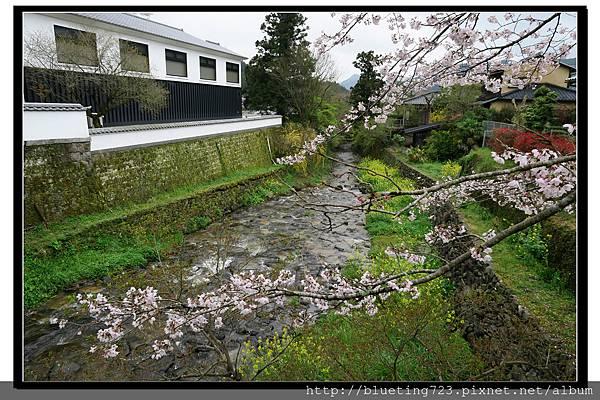 九州福岡《秋月城跡》2.jpg