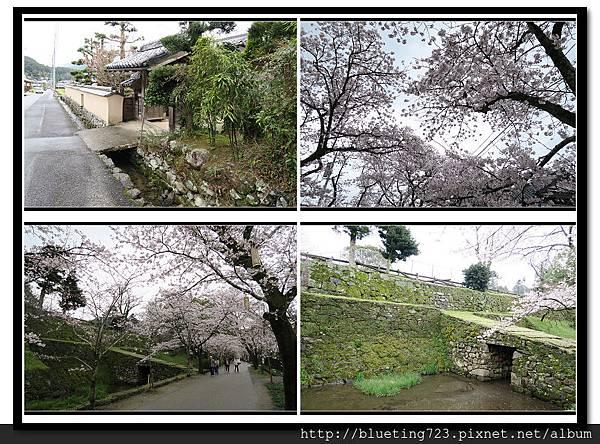 九州福岡《秋月城跡》5.jpg