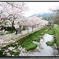 九州福岡《秋月城跡》12.jpg