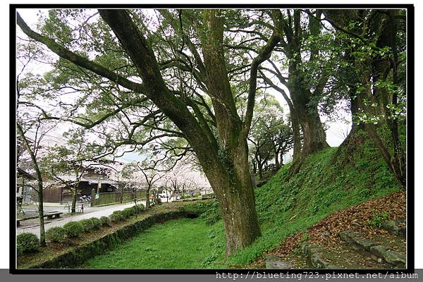 九州福岡《秋月城跡》16.jpg