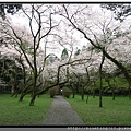 九州福岡《秋月城跡》17.jpg