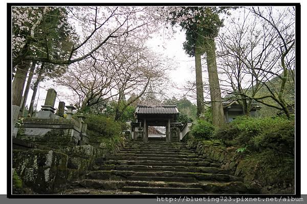 九州福岡《秋月城跡》23.jpg