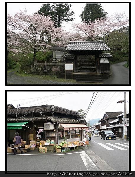 九州福岡《秋月城跡》24.jpg