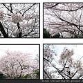 九州福岡《西公園》5.jpg