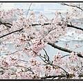 九州福岡《西公園》6.jpg
