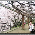 九州福岡《西公園》7_東側展望台.jpg