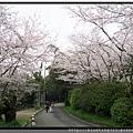 九州福岡《西公園》8.jpg
