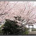 九州福岡《西公園》10.jpg