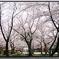九州福岡《西公園》14.jpg