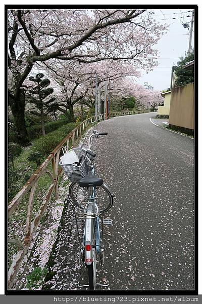 九州佐賀《嬉野溫泉》4.jpg