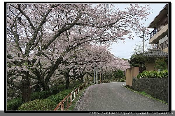九州佐賀《嬉野溫泉》8.jpg