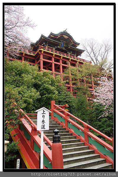 九州佐賀《祐德稻荷神社》11.jpg