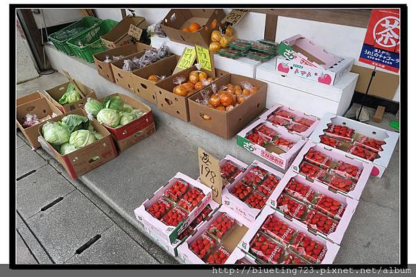 九州佐賀《嬉野溫泉》10 佐賀草莓.jpg