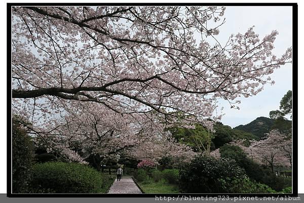 九州佐賀《嬉野溫泉》轟之瀑布公園 10.jpg