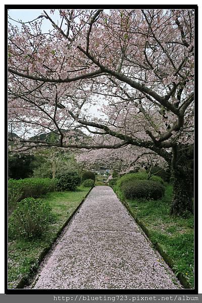 九州佐賀《嬉野溫泉》轟之瀑布公園 11.jpg