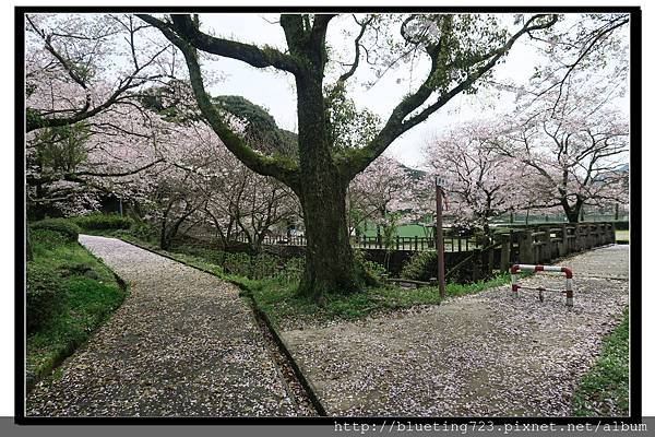 九州佐賀《嬉野溫泉》轟之瀑布公園 12.jpg