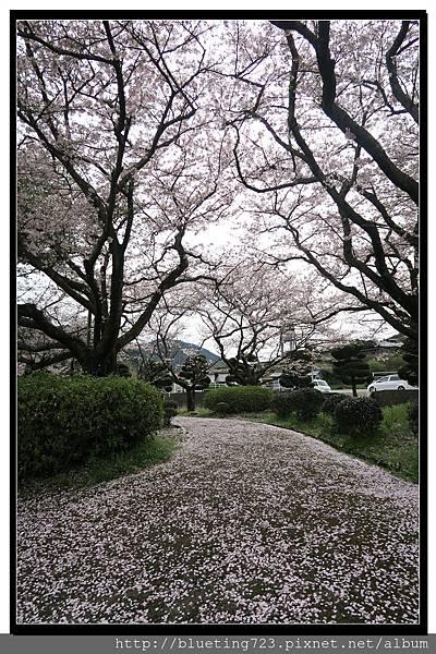 九州佐賀《嬉野溫泉》轟之瀑布公園 19.jpg