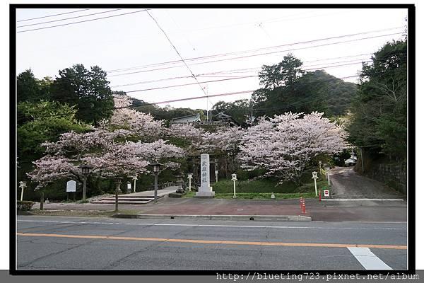 九州佐賀《武雄神社》1.jpg